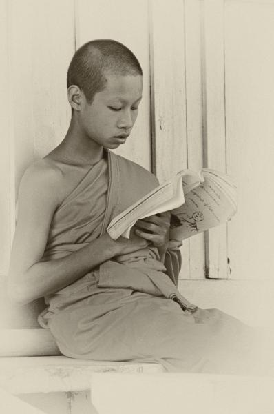 http://lumikoi.com/files/gimgs/th-37_Laos_2011_Couradette_00003_v2.jpg