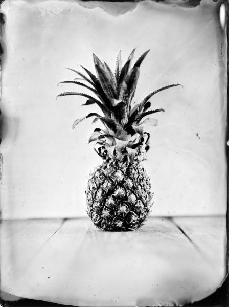 http://lumikoi.com/files/gimgs/th-63_Collodion_Prj_Exotique fruits_Benjamin_Couradette_2014100001_Small.jpg
