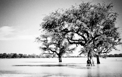 Photographie couradette Water in Burkina Faso